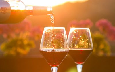 What's the Difference Between Red and White Wine (Besides the Color)?